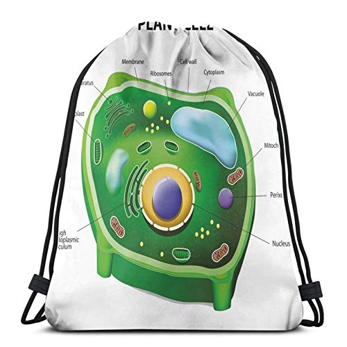 Fuliya Gym Drawstring Bags Backpack,Plant Cell Biology Research Botany Anatomy Structure Organic Life Nature,Unisex Drawstring Backpack
