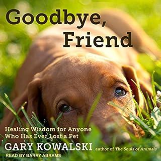 Goodbye, Friend audiobook cover art