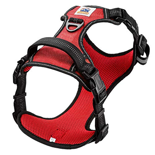 Pordlie Dog Harness No Pull Outdoor, Upgraded Easy Put on & Off No Choke Pet Harness with Control Training Handle, Adjustable Reflective Padded Vest Harness for Small Medium Large Dogs (S, Fuschia)