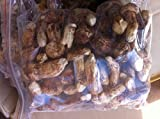10 Ounce (284 grams)Freeze Dried Matsutake Whole Mushroom Premium Grade from Yunnan China...