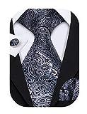 Barry.Wang Black and Grey Tie Set Silk Neckties Formal