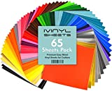 iVinyl - 65 Adhesive Vinyl Sheets 12' x 12' Permanent Self Adhesive Backed Vinyl Sheets - 65 Glossy & Matt Assorted Colors Sheets for Cricut, Craft Cutters, Silhouette Cameo & Crafting Machines