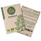Little Plants BIO-Petersiliesamen (Petroselinum crispum) Glattblättrig   BIO-Kräutersamen   Nachhaltige Verpackung aus Graspapier   Kräuter-Samen   BIO-Saatgut für ca. 800 Petersilie-Pflanzen