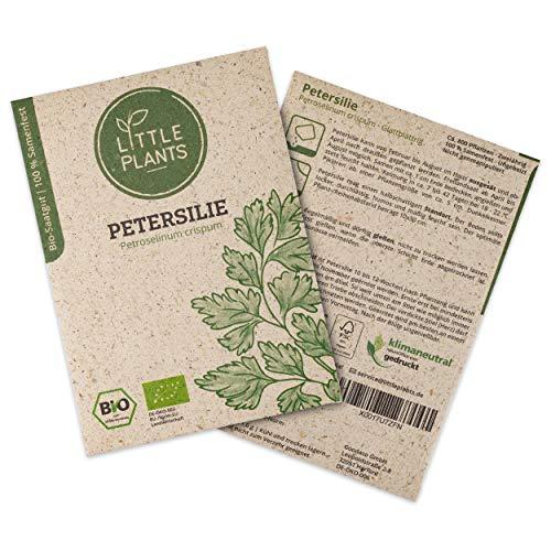 Little Plants BIO-Petersiliesamen (Petroselinum crispum) Glattblättrig | BIO-Kräutersamen | Nachhaltige Verpackung aus Graspapier | Kräuter-Samen | BIO-Saatgut für ca. 800 Petersilie-Pflanzen