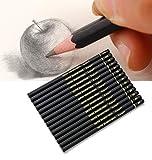 Ensemble de à dessin14 crayons à croquis graphite 12B 10B 8B 7B 6B 5B 4B 3B 2B B HB 2H 4H 6H pour étudiants enseignants enfants adultes artistes débutants professionnels (Boîte en papier noir)