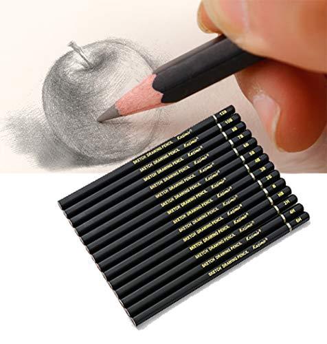 Juego de 14 lápices de dibujo 12B 10B 8B 7B 6B 5B 4B 3B 2B B HB 2H 4H 6H para niños adultos artistas principiantes profesionales (caja de papel negra, sin estuche)
