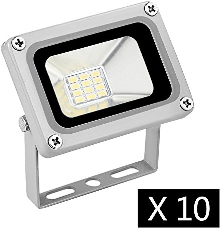 Cheerfulus 10 Stücke 12V DC Kaltwei 10W LED Wandstrahler Scheinwerfer Strahler Fluter IP65 Auen Flutlicht Leuchtmittel 6000-6500K [Energieklasse A+]