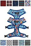 Cute Reversible Dog Harness Walking Halter - Best Designer Pet Harnesses For Extra Small Medium Large XL Dogs Plus Pug Breeds - Padded Adjustable Puppy Vest For Easy Walking (Small, Royal Garden)