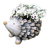 Kituir Cartoon Hedgehog Vaso di Fiori Succulente con drenaggio di buca Planter Giardinaggio Domestico della Decorazione della Tabella Succulente in Vaso Piantare Vaso di Fiori