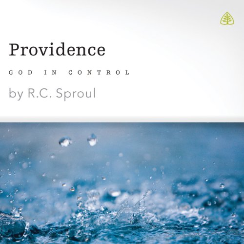 Providence: God in Control audiobook cover art