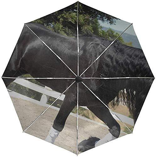 Paraguas automático Caballo Arena Valla Cerca Paseo Hermosa Sombra Conveniente A Prueba de Viento Impermeable Plegable Automático Abrir Cerrar