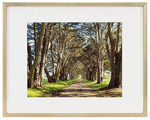 Golden State Art Picture Frame - Gold Aluminum (Shiny Brushed) - Fit Photo with Ivory Mat or Without Mat - Metal Frame Wall Mounting - Real Glass (11x14, Gold)