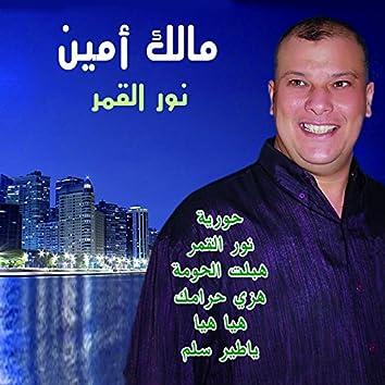 Nour El Qamar