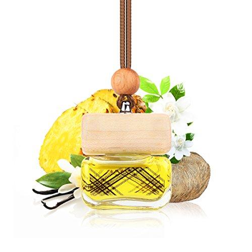 Ambientador de coche, aceite original de perfume francés fabricado por Mane®, accesorios de coche, fragancia de coche, enchufe de fragancia para parrilla de ventilación de vehículo, 6 ml, C-1061
