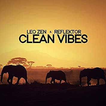 Clean Vibes - Single