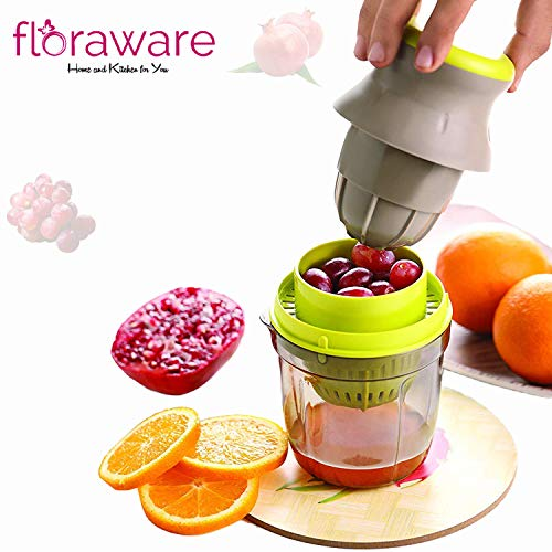 Floraware Fruit & Vegetable Handy Juicer 2 in 1, Multicolour