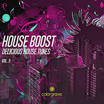 House Boost, Vol. 5 (Delicious House Tunes)