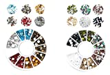 S.A.V.I (Pack of 2) 3D DIY Nail Art Flat back Rhinestone 6 Mixed Colors Crystal Manicure Decoration Disc Wheel (Combo-14), Multi Color