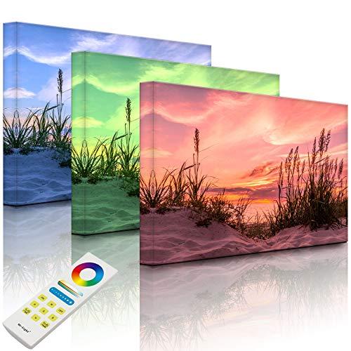 Lightbox-Multicolor   LED Bild Leuchtbild   Gras am Strand bei Sonnenuntergang   100x70 cm   Fully Lighted