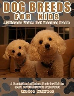 Dog Breeds Kid Friendly