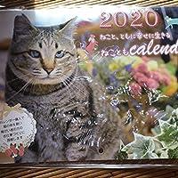 カレンダー地域猫2020