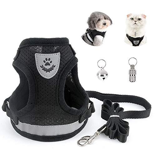 BOJLY Katzenleine mit Geschirr Adressanhänger für Katzen für Spaziergang, Ultraleichtem Katzengeschirr, Katzenleine für Kleine Haustier Katze und Welpen