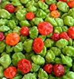 AJI DULCE #1 ,Pepper Seeds,Known As ajicitoo,aji gustoso,ají cachucha & sweet (25 Seeds)