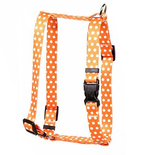 Yellow Dog Design Orange Polka Dot Roman H Dog Harness, Small/Medium-3/4 Wide fits Chest of 14 to 20