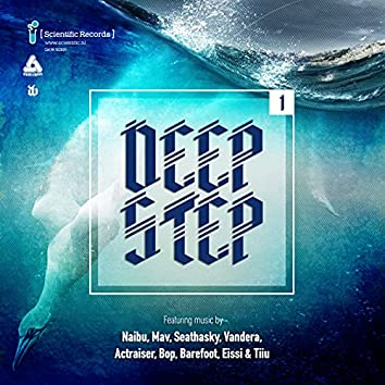 Deepstep .01 LP