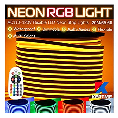 RGB LED Neon Light Strip, AC110-120V/Flexible/Waterproof/Dimmable/Multi-Colors/Multi-Modes Rope Light + 24 Keys Remote for Home/Garden/Building Decor (65.6ft/20m, RGB)