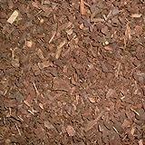 Terra Exotica Pinie 20 Liter fein - Körnung 0-5 mm/Pinienrinde, Pinienborke - Inhalt 20 Liter