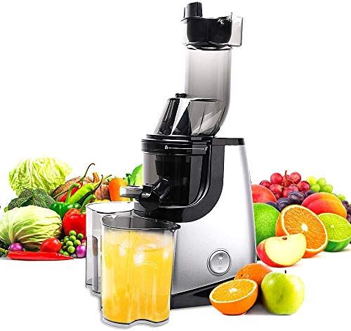 Why Choose Masticating Juice Extractor Machine Quiet Motor Reverse Slow Juicer Function Cold Press J...