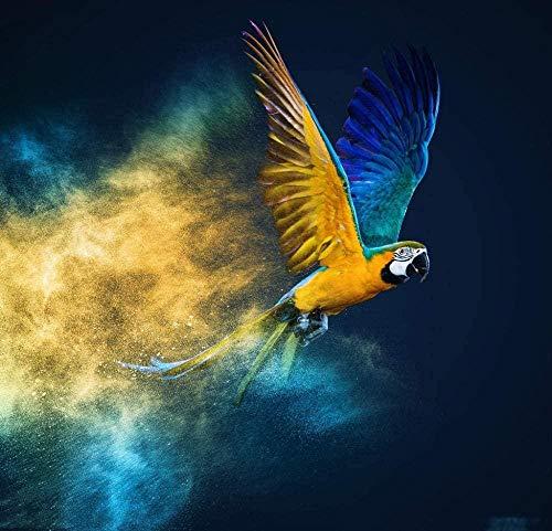 shuodade Pintura por Números Kits para Adultos y niños DIY Pintura al óleo Digital Parrot Volando Lona Creativa Bird Lienzo Arte de la Pared