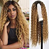 RunM Long Curly Wig for Black Women Kinky Curly Hair Wig 2 Tone Ombre Blonde Wig Natural Heat Resistant Synthetic Curly Wigs 26 Inch(Ombre Blonde)