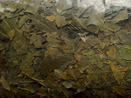 Niembaum Blätter geschnitten 500 g, Niemblätter Neemblätter, nach der Ernte luftgetrocknet, geschnitten, portioniert und vakuumverpackt