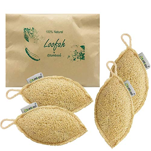 100% Natural Loofah Exfoliating Sponge (4 pack) - Loofah Body Scrubber - Loufa Sponge - Organic Loofah - Exfoliating Body Sponge - Biodegradable loofah - Bath Luffa - Shower sponge for men and women