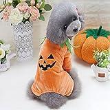 Idepet Haustier-Kostüm für Halloween, Kürbis-Kostüm, Fleece, Jacke, Kleidung für Hunde und...