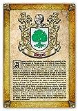Historia y Origen del Apellido Ascaso | Lámina Impresa en Alta resolución + Certificado de Garantía + Plantilla Árbol Familiar de 6 Generaciones