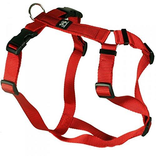 Feltmann Hundegeschirr - Nylonband, Unifarben Rot, Bauchumfang 70-90 cm, 25 mm Bandbreite
