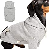 BLOOMING PET Plain Hoodie Shirt Pullover, Spring Clothes for Small Dog, Cotton Short Sleeves Sweatshirt, Stylish Fashionable, Soft Breathable Comfy (Non-Fleece Urban Grey, M)