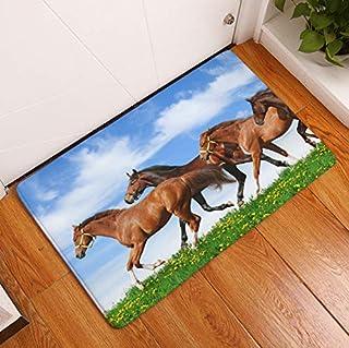 Amazon.es: alfombra bajo puerta