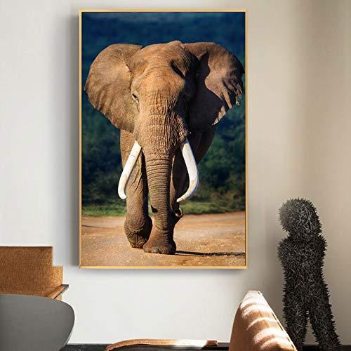 BailongXiao Modernes afrikanisches wildes Elefantenplakat und Druckwandtierbild-Wohnzimmerdekorationsmalerei,Rahmenlose Malerei,45x67cm
