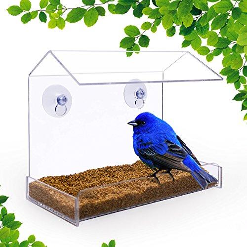 NewCrea Vogelfutterstation für Vögel, Eichhörnchensicher, Fenster für Vogelsamen, Saugnapf, für draußen, für Wildvögel, wie Kardinalen, Kolibri, Finken, Acryl