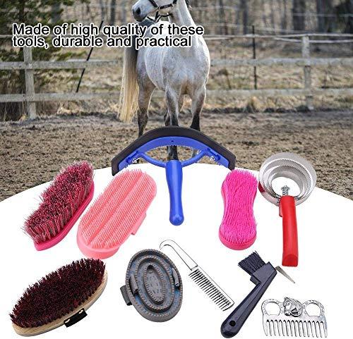 HEEPDD Kit de Cuidado equino, 10 Piezas, Cepillo para