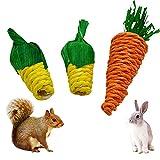 3 Stück Kleintierspielzeug Kleintiere Kauspielzeug Kaninchen Kau Karotte und Mais Hamster Spielzeug Hasenhamster Papagei Chinchilla Meerschweinchen Rennmäuse Kauen Molar Spielzeug