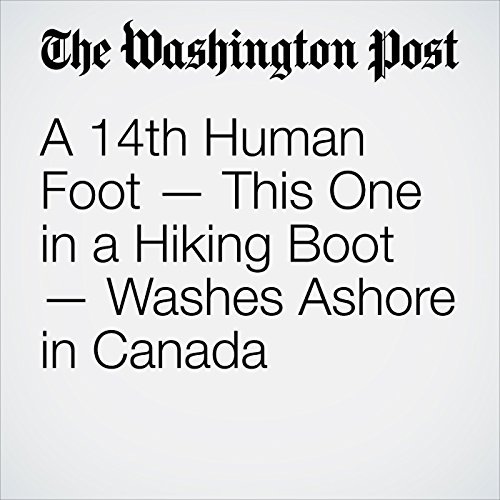 A 14th Human Foot — This One in a Hiking Boot — Washes Ashore in Canada copertina