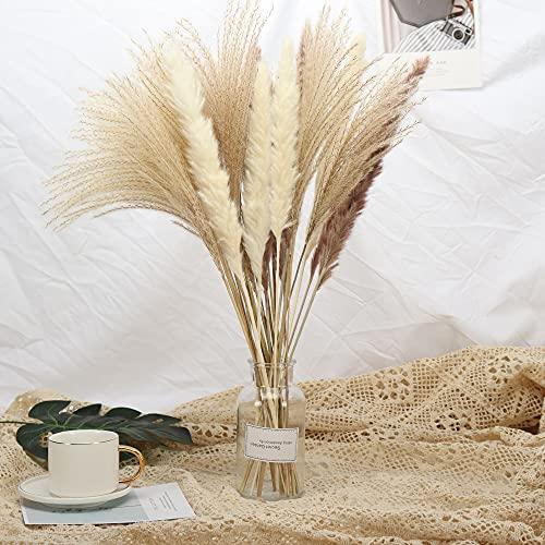30 Pcs Pampasgras, 43cm Natürliche Getrocknete Pampasgras Pflanzen Blumensträußen Bouquet für Pampasgras vase, Boho Home Dekor, Fotografie, Hochzeit, Events, Bürodekoration