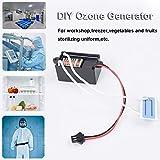 HEREB DC 12 V 200 mg DIY Home Ozon-Generator Luftreiniger Auto Deodorant zum Auffrischen von Obst Gemüse