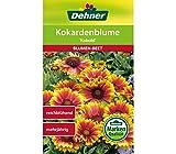 Dehner Blumen-Saatgut, Kokardenblume, 'Kobold', 5er pack (5 x 3 g)