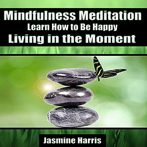 Mindfulness Meditation: Learn How to Be Happy Living in the Moment audiobook cover art